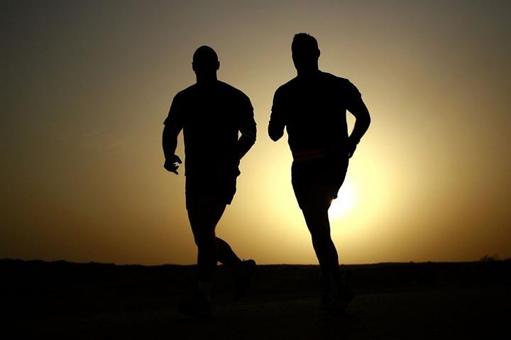 ErgySport para el mantenimiento muscular