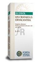 Les Crataegus Oxycanta Espino Albar 50 Ml. - Forza Vitale
