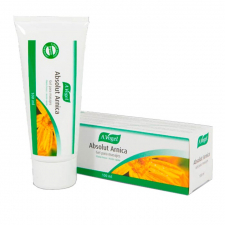 Absolut Arnica Gel Ml 102