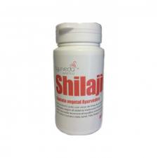Shilajit 60 Capsulas Econostrum - Varios