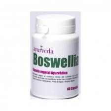 Boswellia 60 Cápsulas Ayurveda Econostrum