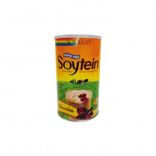 Soytein Chocolate 400 G