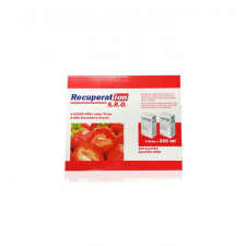 Recuperation Fresa 2 Bricks 250 Ml