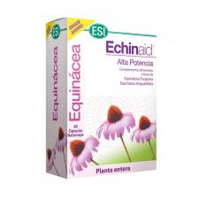 Echinaid 60 Caps