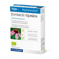 Equinacea 20 Cápsulas - Pileje