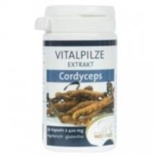 Cordyceps 60Cap.