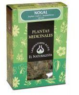 Nogal Planta 40 Gr. - El Naturalista
