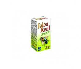 Ynsadiet Jalea Real Fresca 20 Gr - Farmacia Ribera