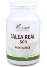 Jalea Real 565Mg. 60 Comp Masticable - Plantapol