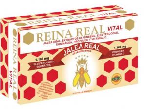 Reina Real Vital 30Amp - Robis