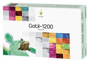 Gotil 1200 20Amp. - Novadiet