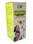 Pantescal Jarabe 250 Ml. - Cfn