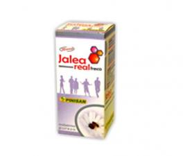 Pinisan Jalea Fresca 20G - Farmacia Ribera