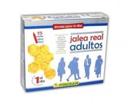 Pinisan Jalea Real Adultos 15 Viales - Farmacia Ribera