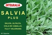 Salvia Plus 60 Cap.  - Integralia