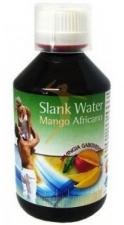 Slank Water Mango 250 Ml. - Espadiet