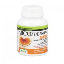 Micotherapy Reishi 495 Mg 90 Capsulas Avd