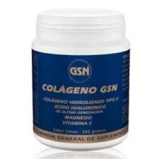 Colageno Gsn Con Acido Hialuronico Limon 340Gr.