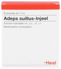 Adeps suillus-Injeel 5 ampollas 1,1 ml