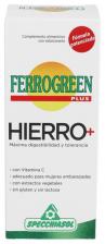 Ferrogreen Jarabe 170 ml.