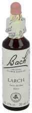 Larch N.19 Gotas 20 Ml.