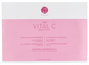 Segle Clinical Vital C Serum Antioxidante - Farmacia Ribera